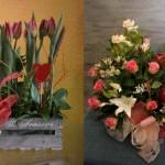 Teatro Vegetal: Decoración Floral